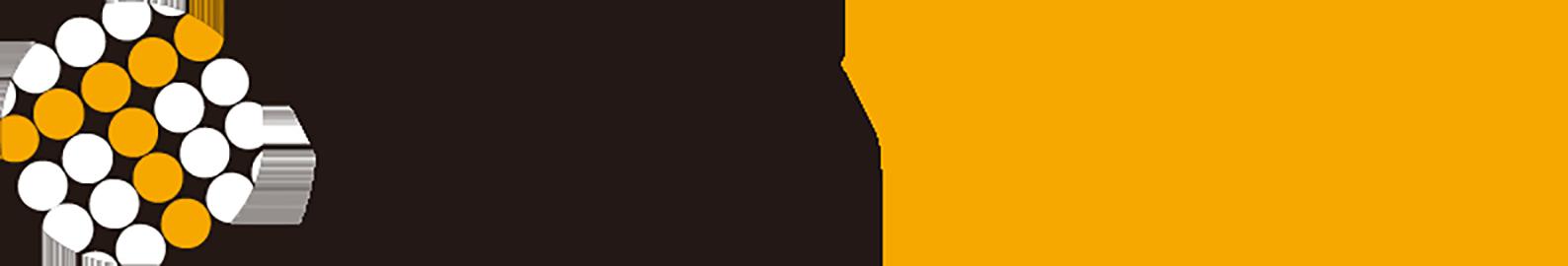 Tech Racho
